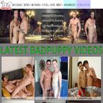 Badpuppy Order