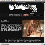 Harlem Hookups Acc