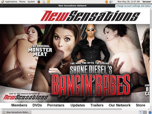 Shanediesel Free Videos